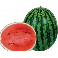 China Quanmei 8K——Watermelon Seed wholesale