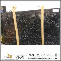 China Morocco Fossil Black Marble For Bathroom Floor Tiles Design And Sale on sale