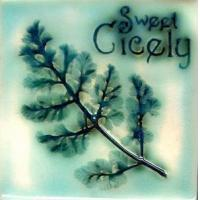 Buy cheap Herbs Sweet Cicely product