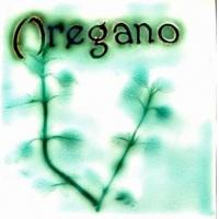 Buy cheap Herbs Oregano product