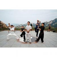 Buy cheap Chinese Martial Arts Masterpiece product