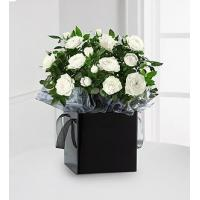 Buy cheap Kind Condolences Mini Rose Plant from wholesalers