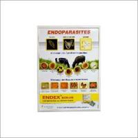 Buy cheap Endoparasites product