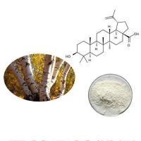 Buy cheap USP32 grade betulinic acid worldwide delivery goods return policy product