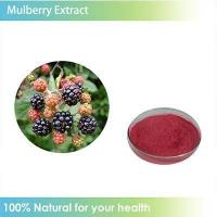 China Free Sample white mulberry leaf extract powder 1%~98% 1-dnj wholesale