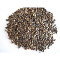 Buy cheap Anti-Oxidant buckwheat extract Model: J1094 product