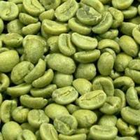 Buy cheap Green Coffee Bean Extract Model: G1003 from wholesalers