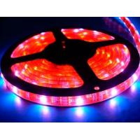China LED Flexible Strip - DC12V/24V wholesale