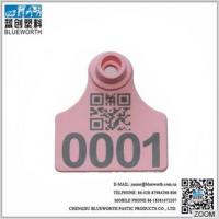 China Blueworth custom-made animal ear tag, China ear tag, ear tag for pig, sheep and wholesale
