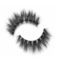 Buy cheap EXTENSIONS LASHES ARIKA from wholesalers