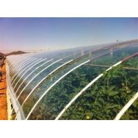 Buy cheap Hydroponic Vegetable Crop Greenhouse product