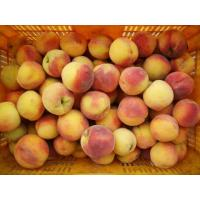 Buy cheap Fruits Raw material of Yellow peach product