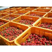 Buy cheap Fruits Raw material of Strawberries product