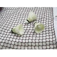 Buy cheap Polyester net ideal for painting and screening product
