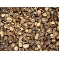 Buy cheap Standard Extracts Shiitake Mushroom Extract product