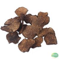 Buy cheap Dried Black Truffle from wholesalers