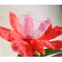 Buy cheap Silica Aerogel from wholesalers