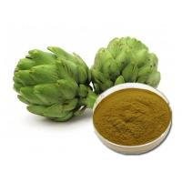 Buy cheap Artichoke Leaf Extract product