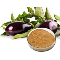 Buy cheap Eggplant Extract product