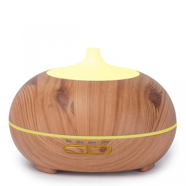 China Aroma Diffuser BS5W300