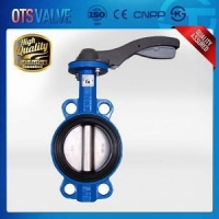 Buy cheap Lug Type Butterfly Valve product
